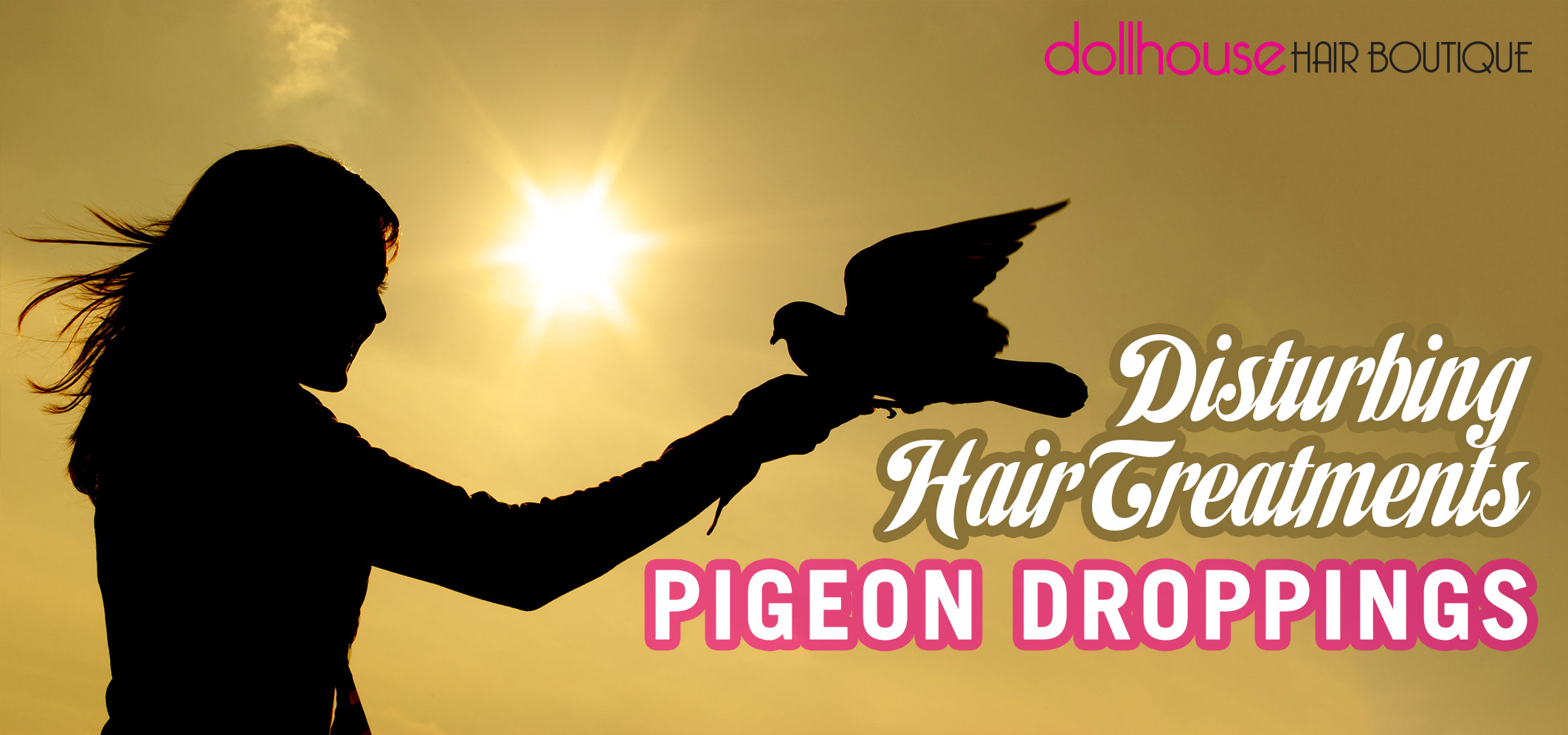 disturbing-hair-treatments-pigeon-droppings
