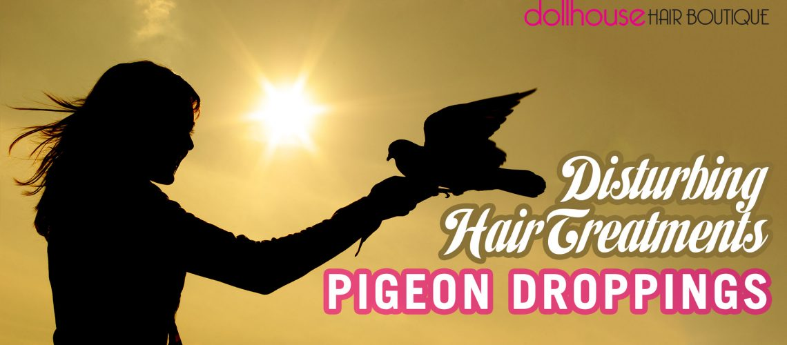 disturbing-hair-treatments-pigeon-droppings